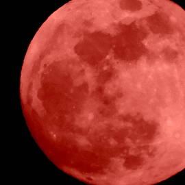 Blood Moon by Arlane Crump