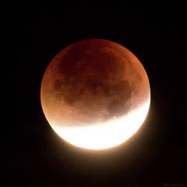 Wim Lanclus - Blood Moon Eclipse