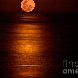 Blood Moon Rising by Bob Hislop