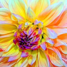 Blooming Beauty by Ed Weidman