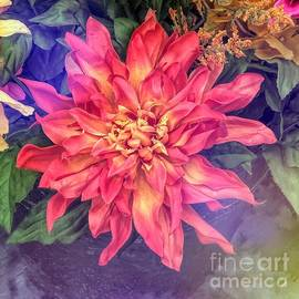 Blooming Beauty  by Luther Fine Art