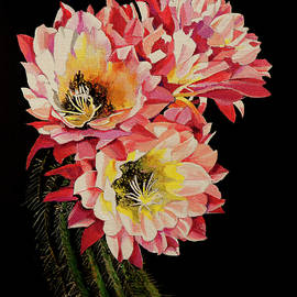 Blooming Cactus by Bill Dunkley