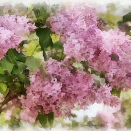 Sergey Lukashin - Blossoming lilac