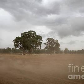 Linda Lees - Blowing up a Storm