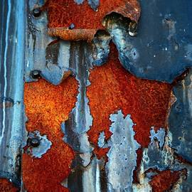 Blue And Rust by Karol Livote