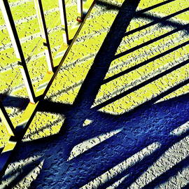 Blue and Yellow Shadows by Bonnie See