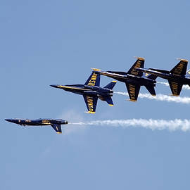 Blue Angels 11 by Gigi Ebert