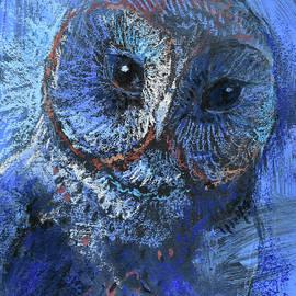 Blue Barn Owl - Tracie Thompson