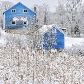 Blue Barns Portrait by Bill Wakeley