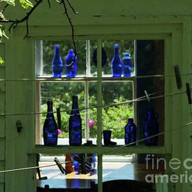 Georgia Sheron - Blue Bottles W/ Clothes Pins