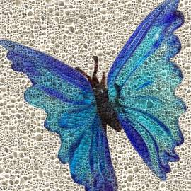 Blue Butterfly by Hari Manev