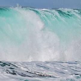 Debra Banks - Blue Cascade   Hawaiian Wave