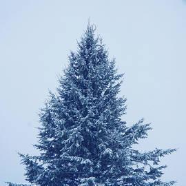 Alana Ranney - Blue Christmas Tree