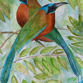 Blue Crowned Motmots by Patricia Beebe