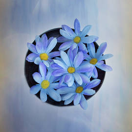 Elvira Pinkhas - Blue Daisies