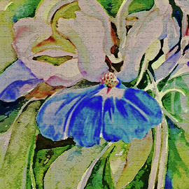 Blue Eyed Mary Wildflower by Mindy Newman