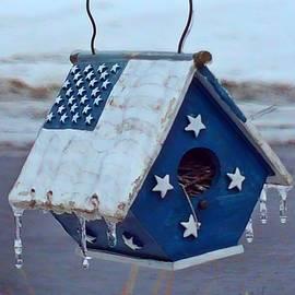 Brenda Plyer - Blue Flag Birdhouse