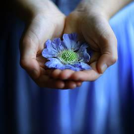 Maggie McCall - Blue flower in little girl
