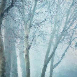 Blue Fog in Winter by Terry Davis