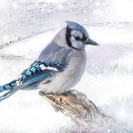Blue Jay Snow by Patti Deters