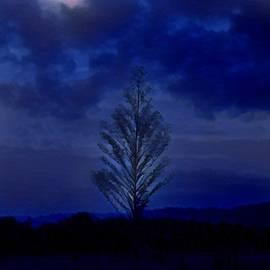 Lisa Lemmons-Powers - Blue Night