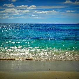 Blue Paradise  by Becki Kremer