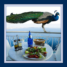 Aisha Abdelhamid - Blue Peacock Dining on the Mediterranean Sea