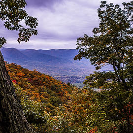 Stacey Bradshaw - Blue Ridge Mountains 1