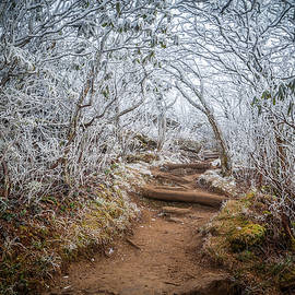 Robert Stephens - Blue Ridge Parkway NC An Entrance To Winter