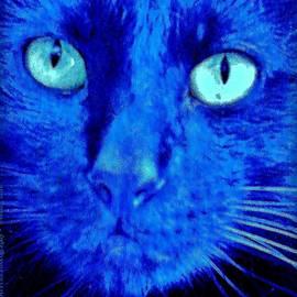 Blue Shadows by Al Fritz