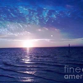 Vicky Tarcau - Blue Sunset