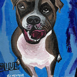 Blue The Pit Bull Terrier by Genevieve Esson