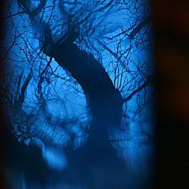 Tree Blues. by Alexander Vinogradov