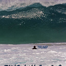 Blue Wave - Trump by Jennifer Robin