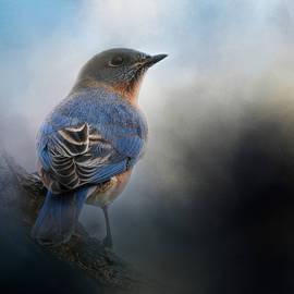 Jai Johnson - Blue Winter Visitor