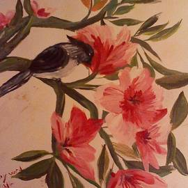Bluebird In The Pink by Mary Ward