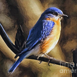 Sue Melvin - Bluebird Portrait