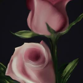 Blush Garden Rose by Michele Koutris