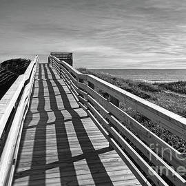 Kelley Freel-Ebner - Boardwalk in Black