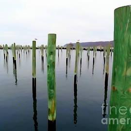 Ed Weidman - Boat Marina Poles