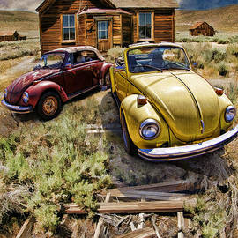 Bodie And Volkswagen Bugs by Blake Richards