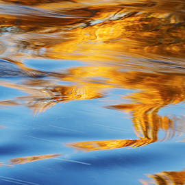Vishwanath Bhat - Boise River Autumn Reflection abstract