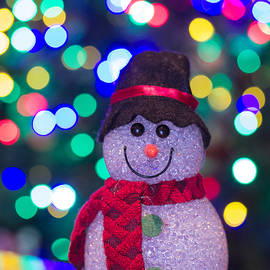 Bokeh Snowman Three by Mo Barton