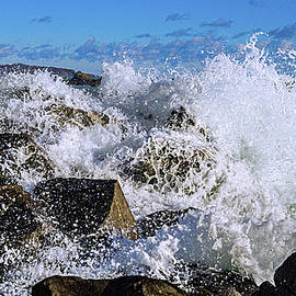 Bold Coast of Down East Maine by Marty Saccone