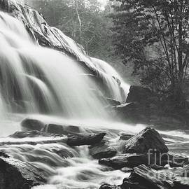Blackwater Studio - Bond Falls