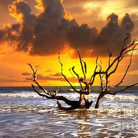 Bruce Bain - Boneyard Sunrise
