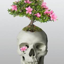 Bonsai Skull by Ivana Westin