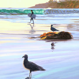 Boogie Boarder and Birds - Steve Simon