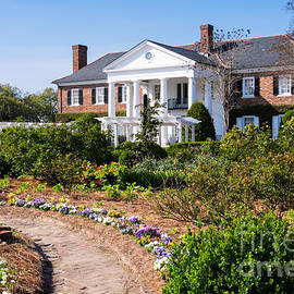 Dawna Moore Photography - Boone Hall Plantation and Gardens Mount Pleasant South Carolina