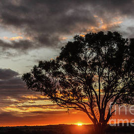 Boorowa Sunset by Werner Padarin